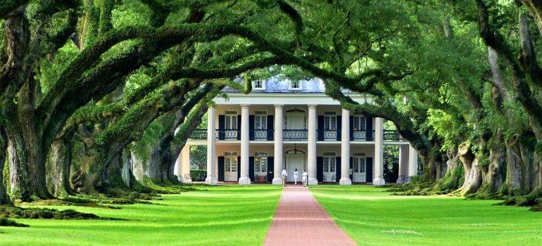 Plantation nature of Louisiana